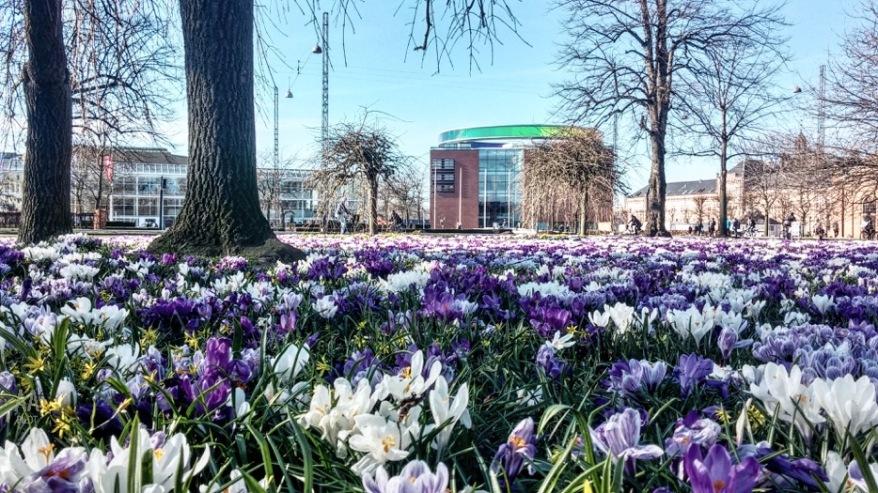 With view to ARoS from Town Hall Park in Aarhus © AArhusPilot.com   Kirsten K. Kester