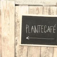 Plantecaféen